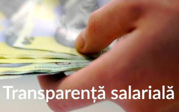 Transparența veniturilor salariale 31 martie 2019