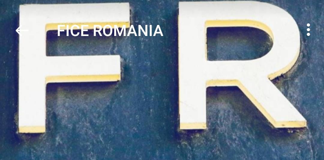 Proiecte naționale FICE ROMÂNIA